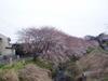 f:id:honda-jimusyo:20060326090032j:plain