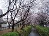 f:id:honda-jimusyo:20060326090210j:plain