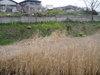 f:id:honda-jimusyo:20060326092242j:plain