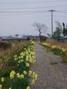 f:id:honda-jimusyo:20060326100051j:plain