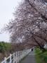 f:id:honda-jimusyo:20060326110900j:plain