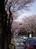 f:id:honda-jimusyo:20060329132049j:plain