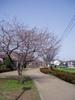 f:id:honda-jimusyo:20060401073856j:plain