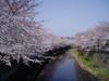 f:id:honda-jimusyo:20060401081021j:plain