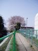 f:id:honda-jimusyo:20060401085433j:plain