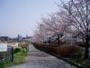f:id:honda-jimusyo:20060401095056j:plain