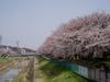 f:id:honda-jimusyo:20060401100436j:plain