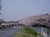 f:id:honda-jimusyo:20060401105900j:plain