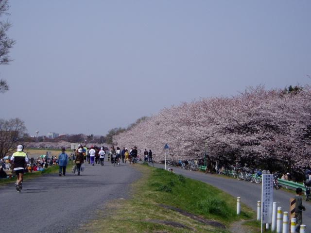 f:id:honda-jimusyo:20060401105901j:plain