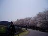 f:id:honda-jimusyo:20060401112907j:plain
