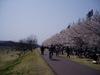 f:id:honda-jimusyo:20060401113514j:plain