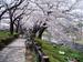 f:id:honda-jimusyo:20060401115748j:plain