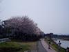 f:id:honda-jimusyo:20060401122753j:plain