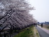 f:id:honda-jimusyo:20060401123629j:plain