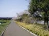 f:id:honda-jimusyo:20060409132016j:plain