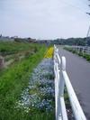 f:id:honda-jimusyo:20060430103518j:plain