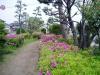 f:id:honda-jimusyo:20060430112220j:plain