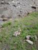 f:id:honda-jimusyo:20060430112626j:plain