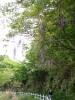 f:id:honda-jimusyo:20060430120101j:plain