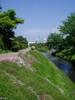 f:id:honda-jimusyo:20060503095139j:plain