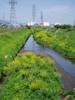 f:id:honda-jimusyo:20060503100232j:plain