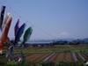f:id:honda-jimusyo:20060503104311j:plain