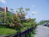 f:id:honda-jimusyo:20060504084810j:plain