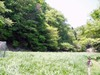 f:id:honda-jimusyo:20060504091430j:plain