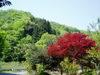 f:id:honda-jimusyo:20060504091826j:plain