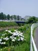 f:id:honda-jimusyo:20060624111403j:plain
