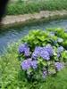 f:id:honda-jimusyo:20060624111422j:plain