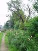 f:id:honda-jimusyo:20060729100220j:plain