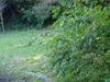 f:id:honda-jimusyo:20061008125808j:plain