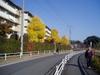 f:id:honda-jimusyo:20061202111430j:plain
