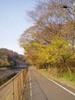 f:id:honda-jimusyo:20061216081309j:plain