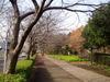 f:id:honda-jimusyo:20061216083835j:plain