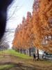 f:id:honda-jimusyo:20061216102906j:plain