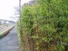 f:id:honda-jimusyo:20061216134308j:plain