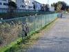 f:id:honda-jimusyo:20061231130527j:plain