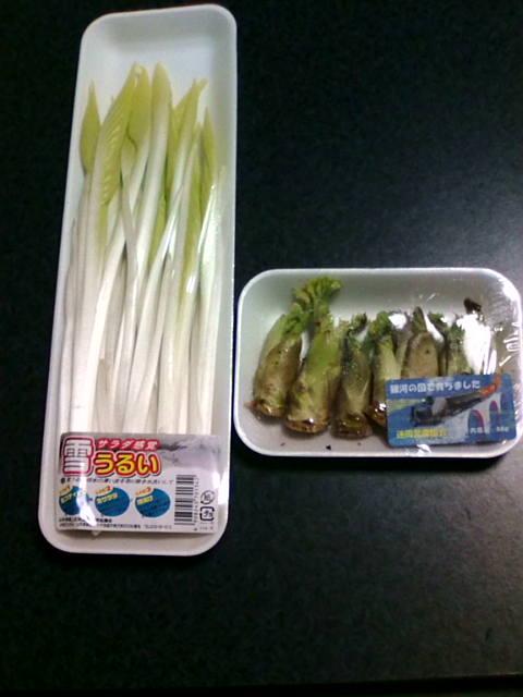 f:id:honda-jimusyo:20090127204624j:plain