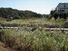 f:id:honda-jimusyo:20090920115902j:plain