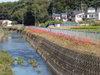 f:id:honda-jimusyo:20090920122233j:plain