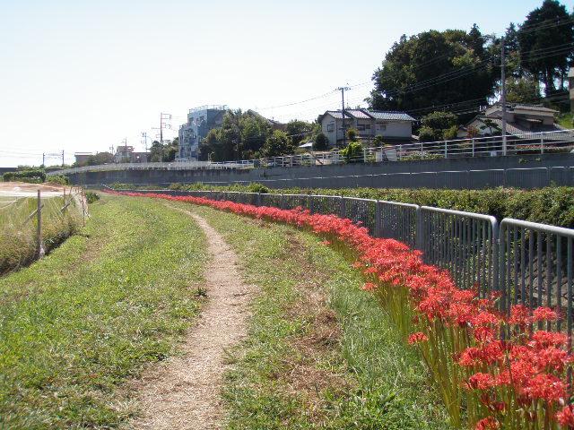 f:id:honda-jimusyo:20090920124037j:plain