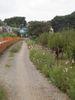 f:id:honda-jimusyo:20090922112805j:plain