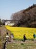 f:id:honda-jimusyo:20100314113037j:plain