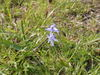f:id:honda-jimusyo:20100320142125j:plain