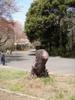 f:id:honda-jimusyo:20100410111607j:plain