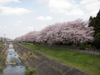 f:id:honda-jimusyo:20100410115917j:plain