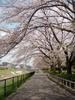 f:id:honda-jimusyo:20100410120041j:plain