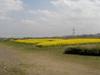 f:id:honda-jimusyo:20100410123058j:plain